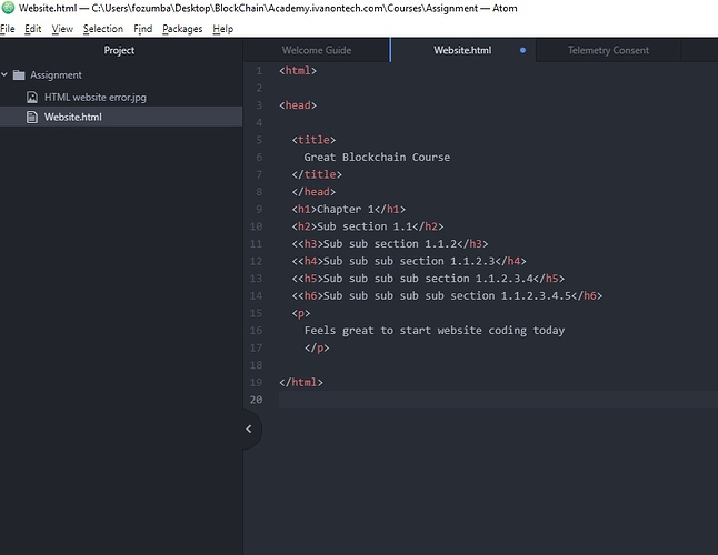 HTML website error - source code